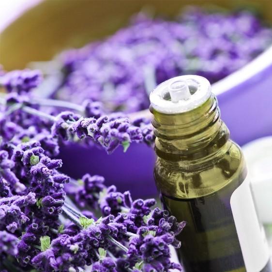 aromatherapy-essential-oils.info.jpg