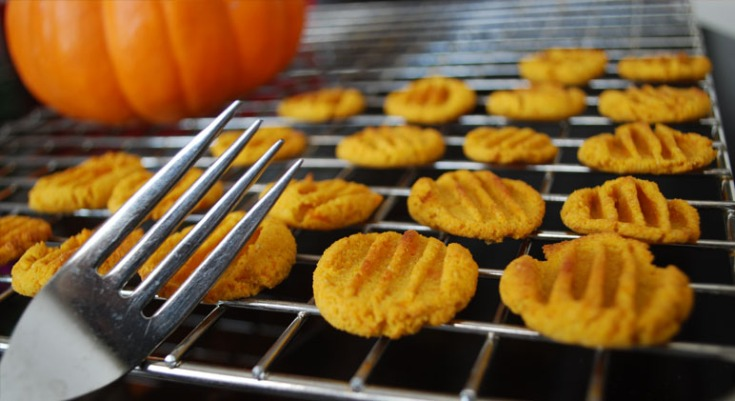 Pumpkin-Sweet-Potato-DIY-Dog-Treats